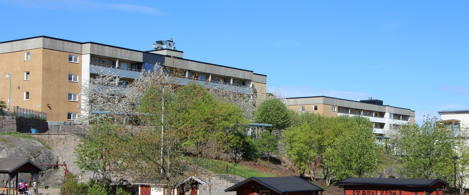 Nya slott pa dating webbplatser